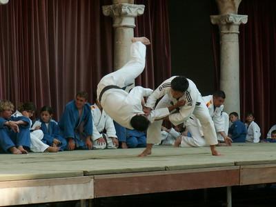 judo_54bba266b5z.jpg
